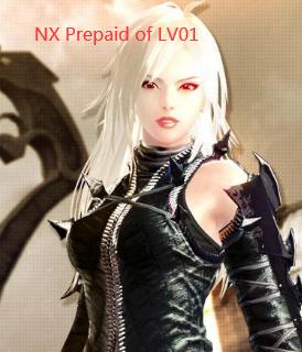 Vindictus CDKey : NXPrepaidwithLV01Account NX 100.000